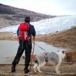 Svartisen – Der zweitgrößte Gletscher Norwegens